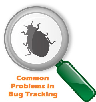 Top 10 common problems in bug tracking