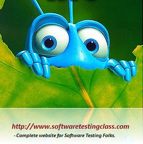 Top 10 reasons why there are Bugs in Software!