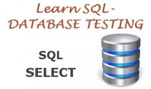Sql select statement