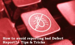 Defect Reporting